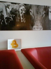burgermeester decor with cows
